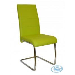 Jídelní židle Y100 zelená - FALCO