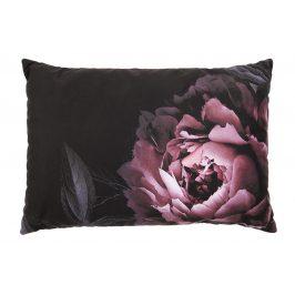 Hoorns Černý sametový polštář Tallulah s růžovým květinovým motivem, 40x60 cm