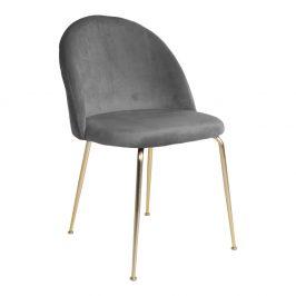 Šedá sametová jídelní židle Nordic Living Anneke se zlatou podnoží