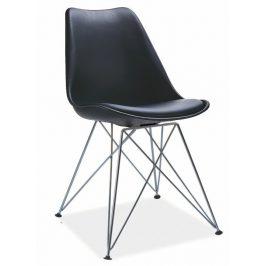 Jídelní plastová židle v černé barvě na kovové konstrukci KN362