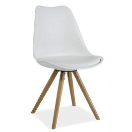 Jídelní židle s čalouněním v bílé ekokůži KN639
