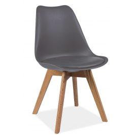 Plastová jídelní židle v šedém provedení s dubovými nožičkami KN361