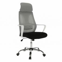 Kancelářské křeslo, šedá / černá / bílá, TAXIS