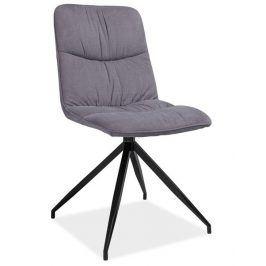Jídelní čalouněná židle Alex, šedá