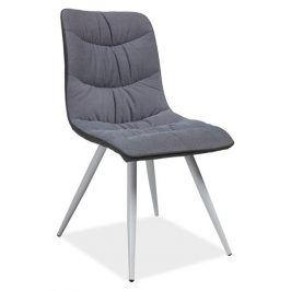 Jídelní čalouněná židle EVITA, šedá