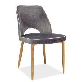 Jídelní čalouněná židle VERDI, šedá