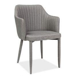 Jídelní čalouněná židle WELTON, světle šedá Židle do kuchyně