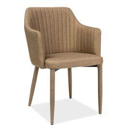 Jídelní čalouněná židle WELTON, béžová