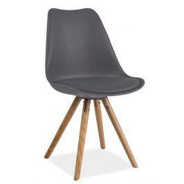 Jídelní židle ERIC, šedá