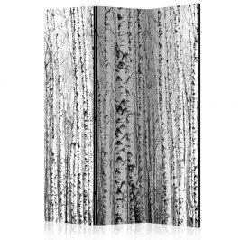 Paraván Birch forest Dekorhome 135x172 cm (3-dílný)