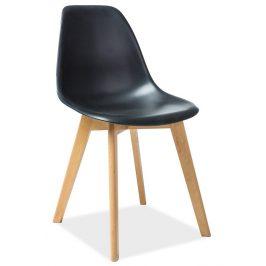 Casarredo Jídelní židle MORIS černá/buk