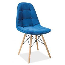 Casarredo Jídelní židle AXEL III modrá aksamit/buk