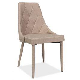 Casarredo Jídelní čalouněná židle TRIX béžová