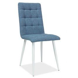 Casarredo Jídelní čalouněná židle OTTO modrá/bílá