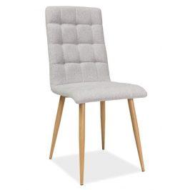 Casarredo Jídelní čalouněná židle OTTO béžová/dub Židle do kuchyně