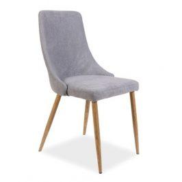 Casarredo Jídelní čalouněná židle NOBEL šedá Židle do kuchyně