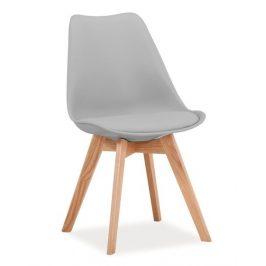 Casarredo Jídelní židle KRIS světle šedá/buk