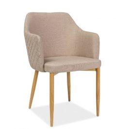 Casarredo Jídelní čalouněná židle ASTOR béžová