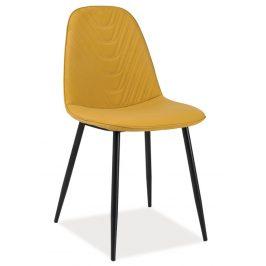 Casarredo Jídelní čalouněná židle TEO A curry