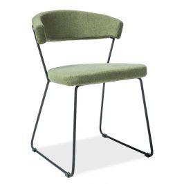 Casarredo Jídelní čalouněná židle HELIX zelená