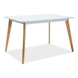 Casarredo Jídelní stůl DECLAN I 120x80 bílá/buk