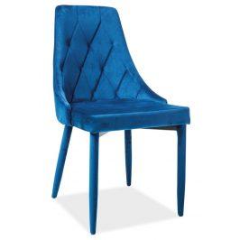 Casarredo Jídelní čalouněná židle TRIX VELVET modrá