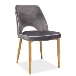Casarredo Jídelní čalouněná židle VERDI šedá