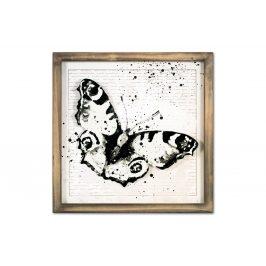 Autronic Obraz motýl OBX1047