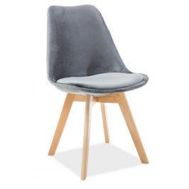 Casarredo Jídelní čalouněná židle DIOR VELVET šedá/buk