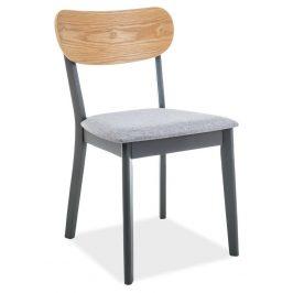 Casarredo Jídelní čalouněná židle VITRO šedá/dub/grafit Židle do kuchyně