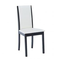 Tempo Kondela Jídelní židle Venis NEW - wenge / ekokůže bílá