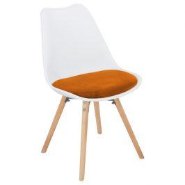 Tempo Kondela Jídelní židle Semer New - terakotta sametová látka / bílý plast / buk Židle do kuchyně