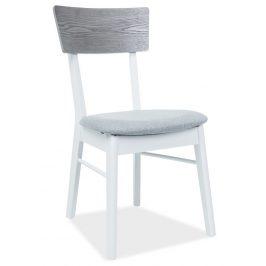 Casarredo Jídelní čalouněná židle MR-SC bílá/šedá