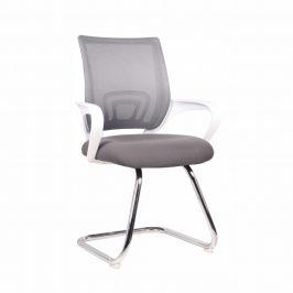 Tempo Kondela Konferenční židle SANAZ TYP 3 - šedá/bílá