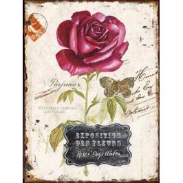 Autronic Obraz Rose HA672492
