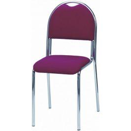 Kovobel Jídelní židle Senta