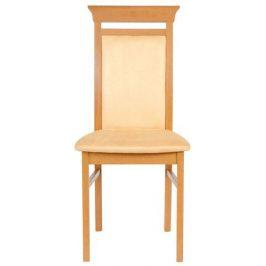 BRW Jídelní židle Ontario TXK-NKRS