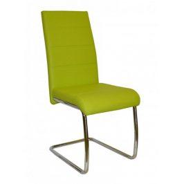 Falco Jídelní židle Y 100 - zelená Židle do kuchyně